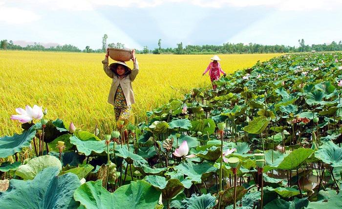 """Tân Bộ trưởng Bộ NNPTNT Lê Minh Hoan: Từ """"Hội quán nông dân"""" đến kiến thiết không gian phát triển cho nông nghiệp Việt Nam - Ảnh 6."""