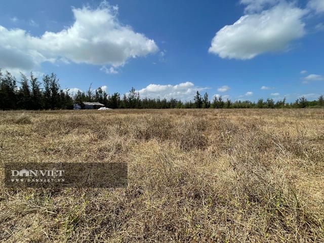 Dự án Khu phức hợp ven biển 370 ha: Huyện không đồng ý vị trí tỉnh cho khảo sát  - Ảnh 1.