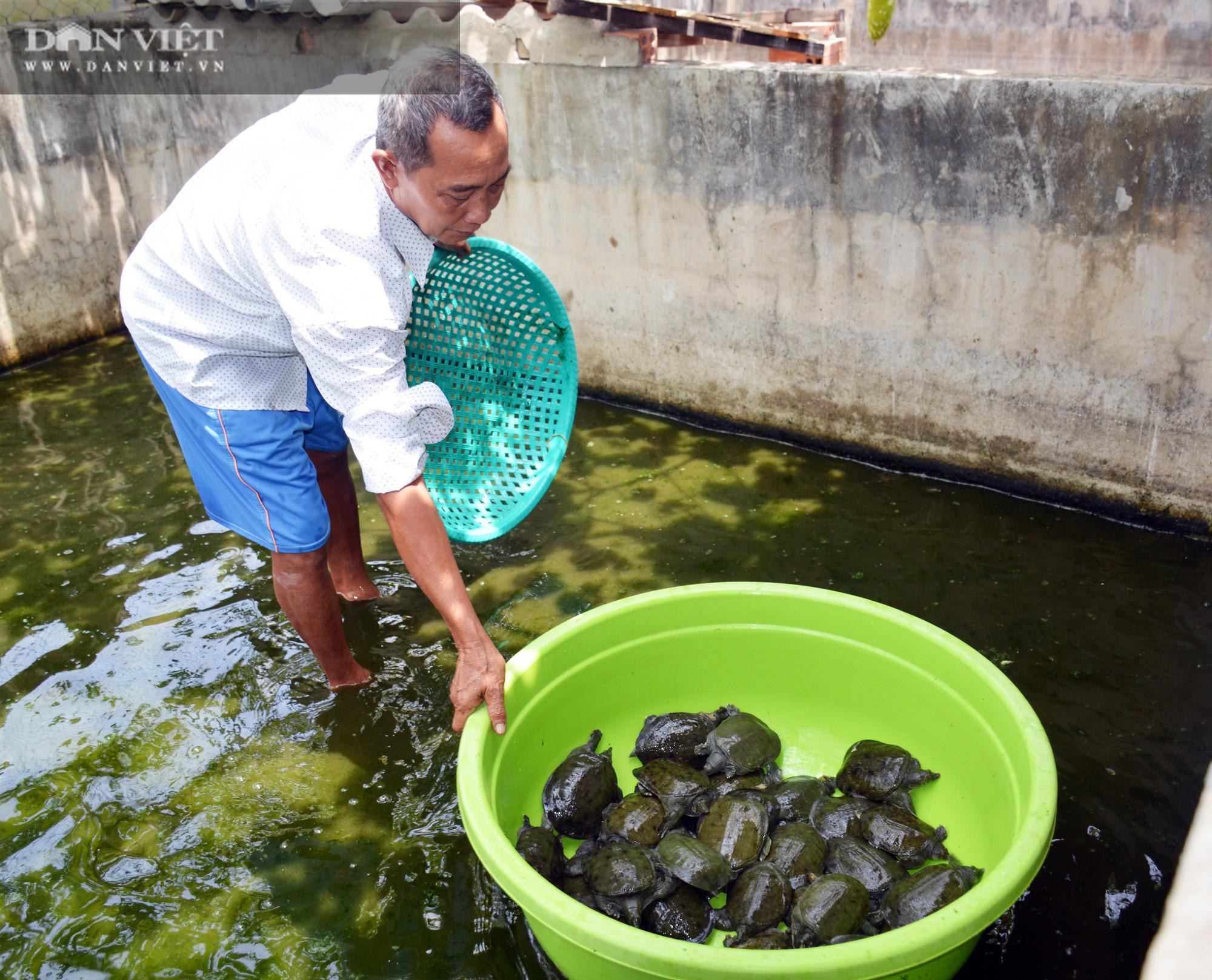 Cà Mau: Ấp Khmer chỉ có 2 hộ nghèo, nhiều mô hình làm ăn cho thu nhập cao - Ảnh 6.