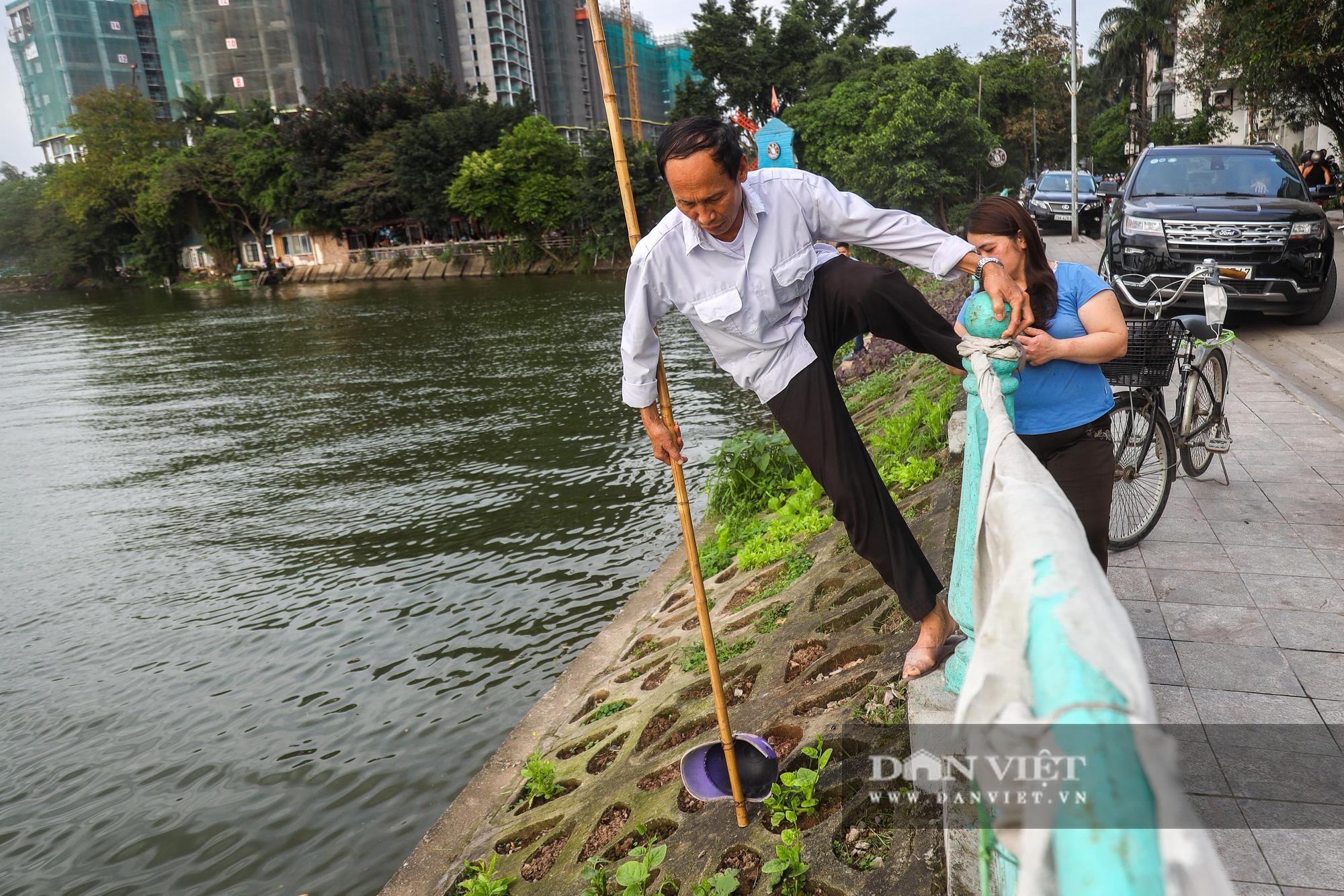 Độc đáo mô hình trồng rau hốc đá ven hồ ở Hà Nội - Ảnh 7.