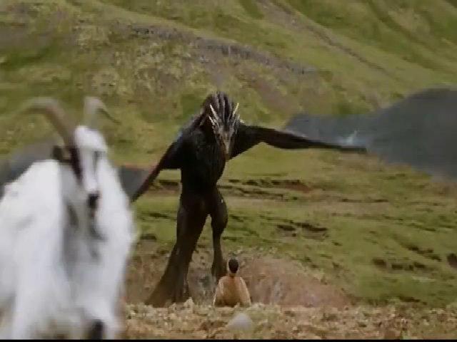 Gặp gỡ người phụ nữ đã cứu loài dê Iceland thoát khỏi bờ vực tuyệt chủng - Ảnh 3.