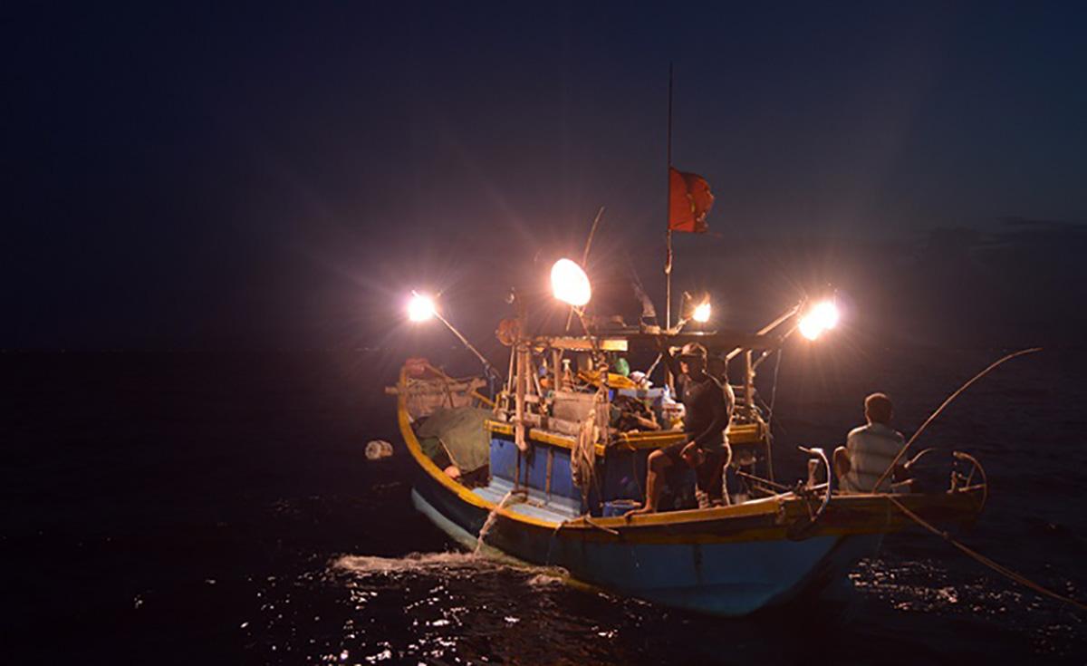 Du lịch Phú Quốc: Câu mực đêm có gì hay mà nhiều du khách muốn trải nghiệm? - Ảnh 1.