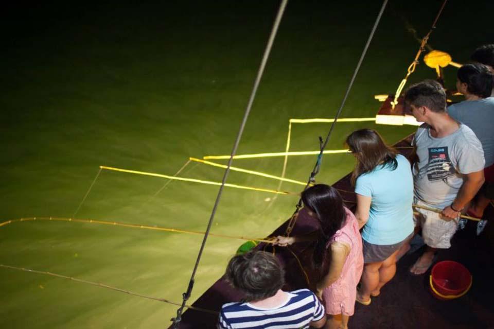 Du lịch Phú Quốc: Câu mực đêm có gì hay mà nhiều du khách muốn trải nghiệm? - Ảnh 4.