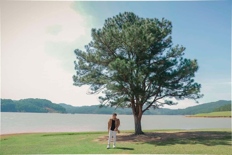 Bỏ túi kinh nghiệm du lịch Đà Lạt mùa hè 2021 - Ảnh 11.
