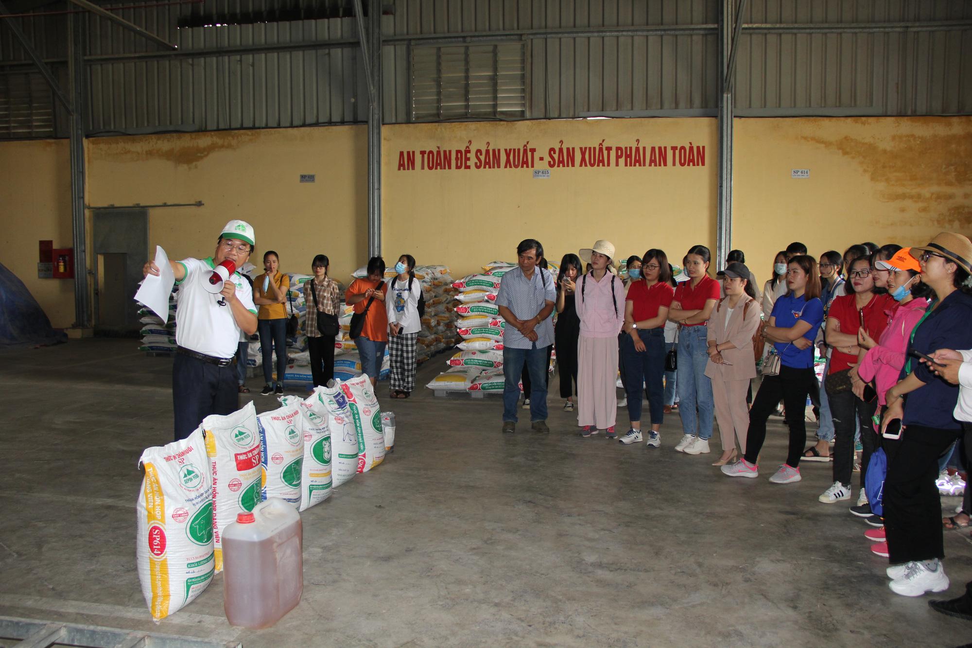 Khám phá tour du lịch học tập chỉ với 250.000 đồng ở Quảng Trị - Ảnh 1.