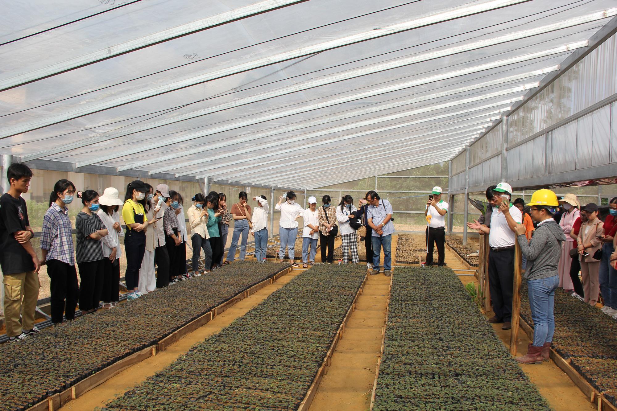 Khám phá tour du lịch học tập chỉ với 250.000 đồng ở Quảng Trị - Ảnh 2.