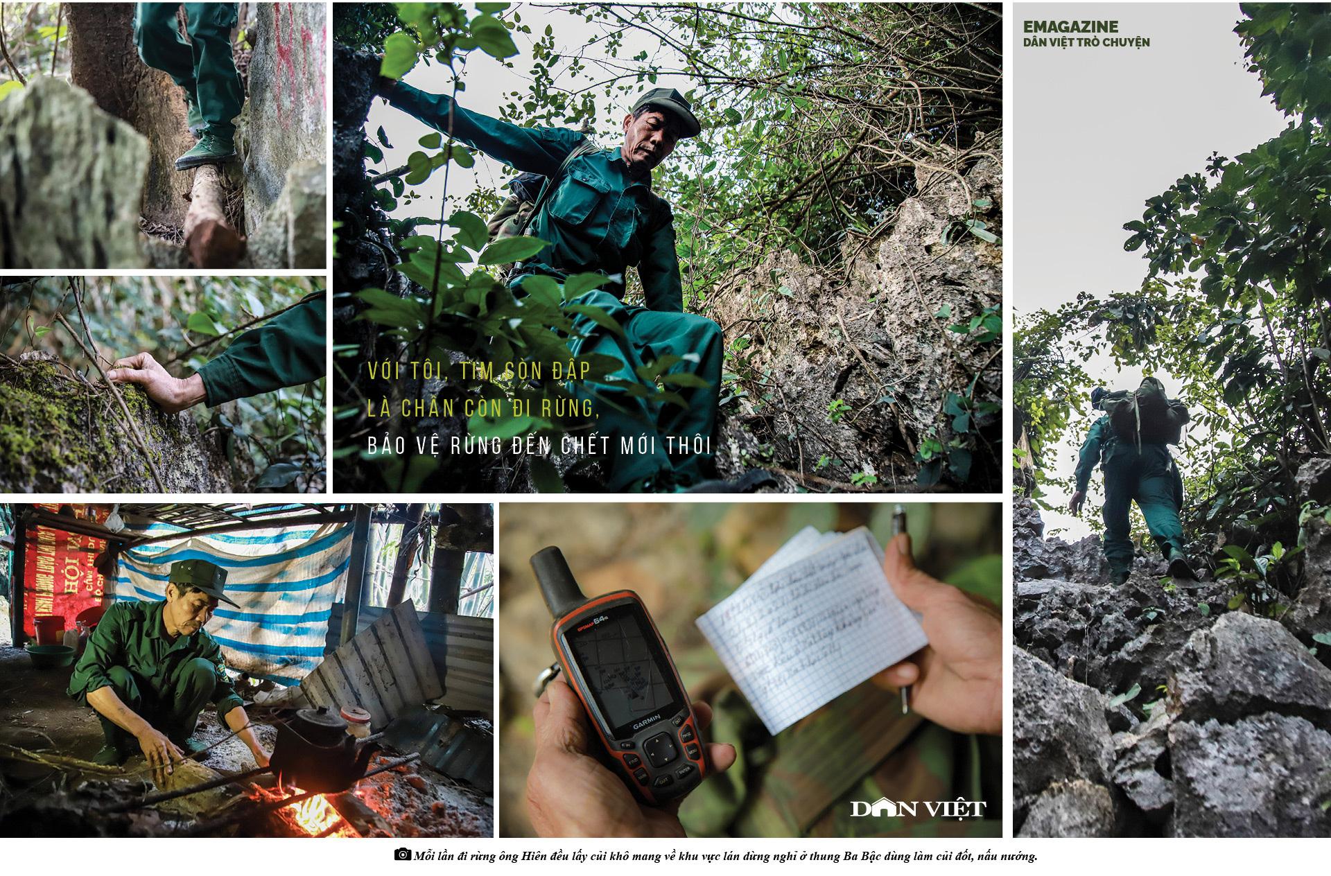 Dân Việt Trò Chuyện: Thợ săn buông súng chuộc lỗi với rừng già - Ảnh 11.