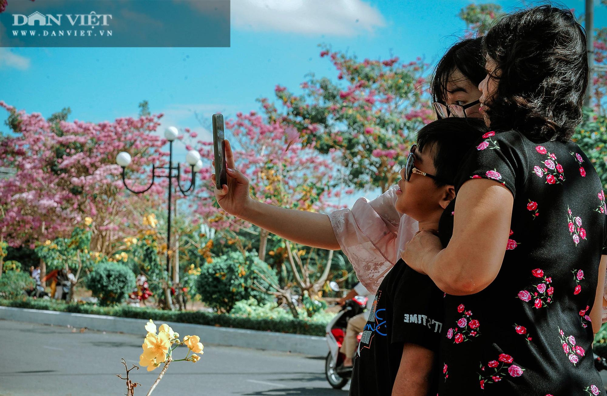 Giới trẻ đổ xô check in tại con đường hoa kèn hồng đẹp như phim Hàn Quốc ở miền Tây - Ảnh 9.
