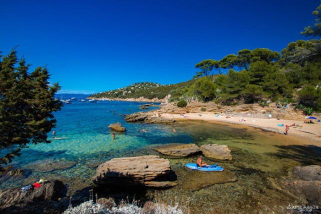 Thiên đường bí mật - đảo khỏa thân Le Levant duy nhất ở châu Âu - Ảnh 4.