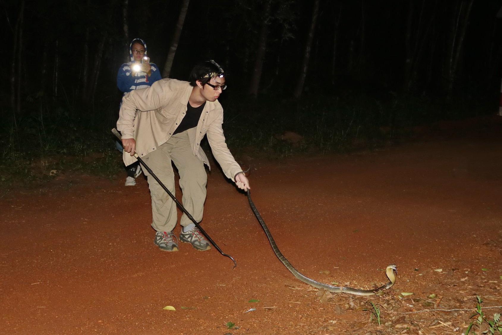 Đằng sau trào lưu nuôi thú cưng là loài hoang dã, có độc - Ảnh 3.