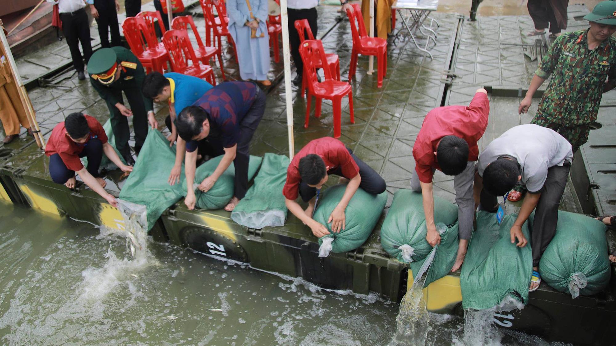 Hơn 10 tấn cá được phóng sinh trên quê hương Bác Hồ - Ảnh 8.