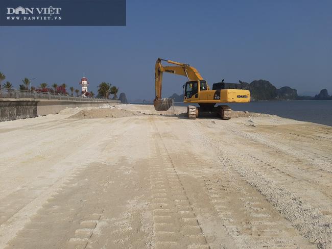 Quảng Ninh: Kỷ luật cán bộ liên quan vụ việc Công ty Phương Đông đổ đất lấn chiếm bãi triều ở Vân Đồn - Ảnh 1.