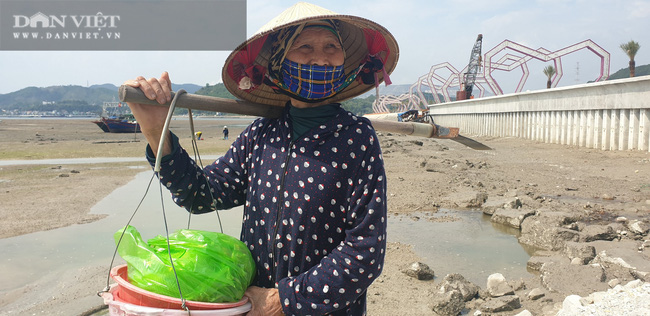 Quảng Ninh: Kỷ luật cán bộ liên quan vụ việc Công ty Phương Đông đổ đất lấn chiếm bãi triều ở Vân Đồn - Ảnh 2.
