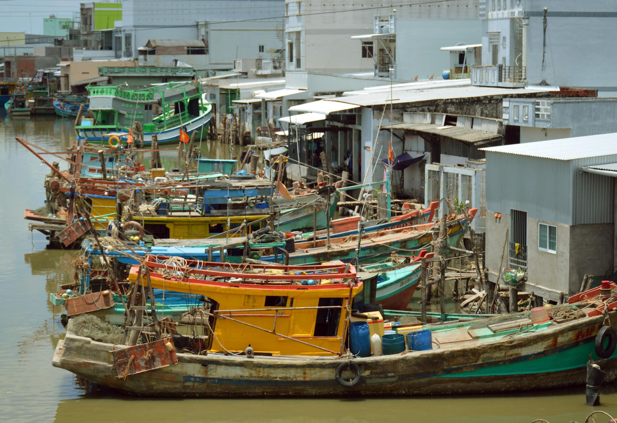 Một tập đoàn muốn đầu tư thành phố hải sản quy mô 500ha ở Cà Mau - Ảnh 1.