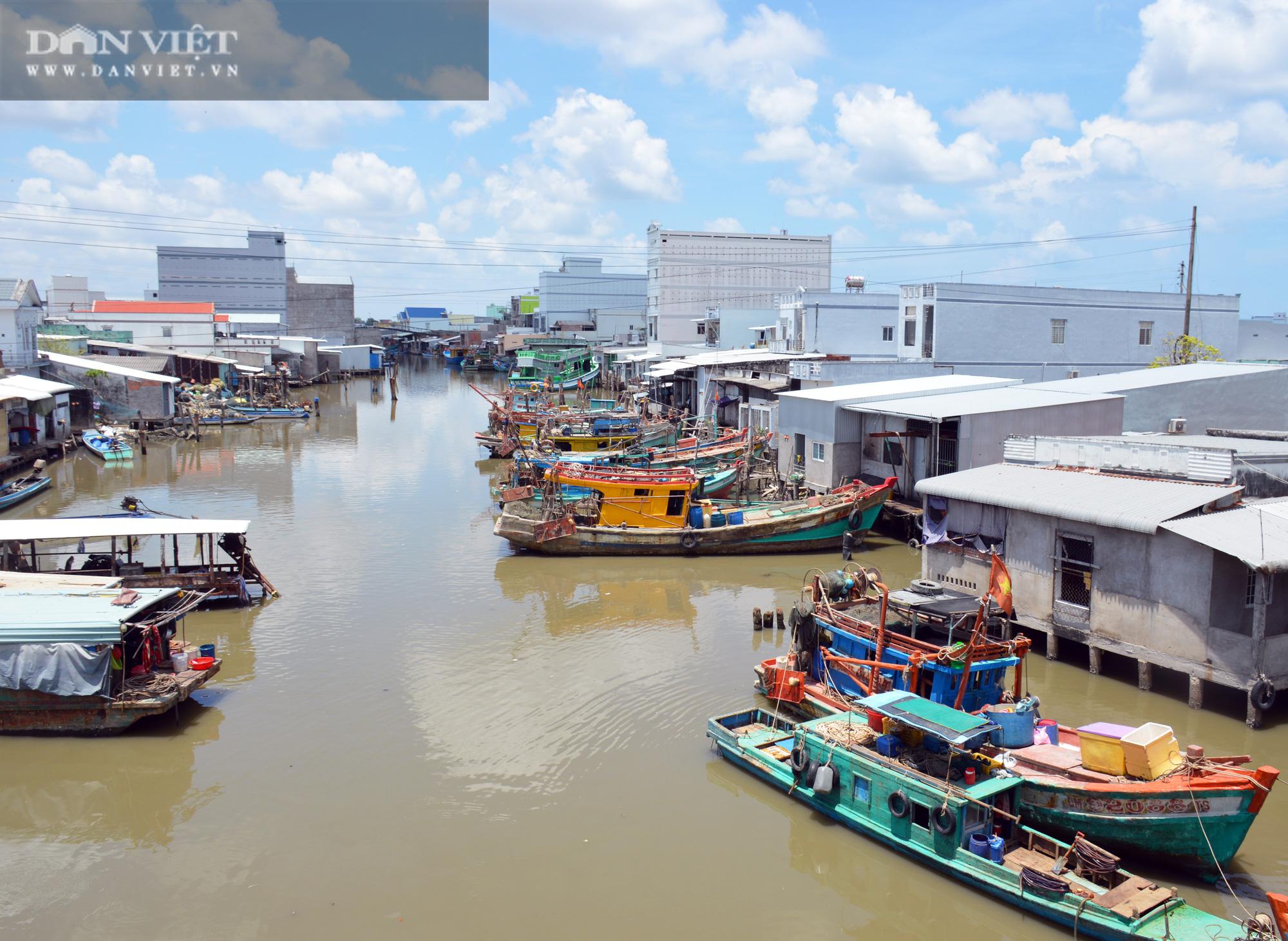 Cà Mau: Dân phản ánh tình trạng mua bán ngư trường, bất cập về chứng nhận nguồn gốc thủy sản - Ảnh 4.