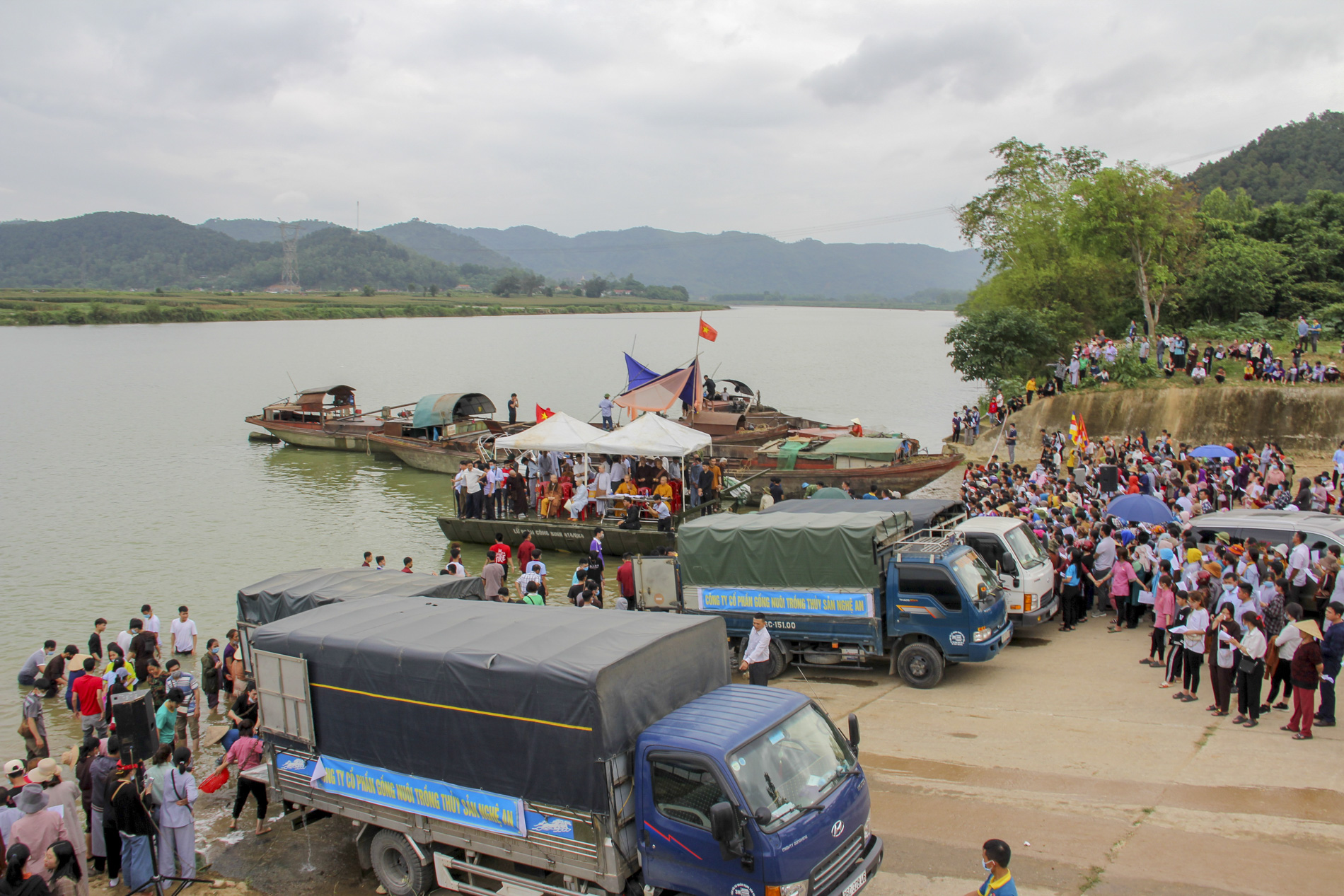 Hơn 10 tấn cá được phóng sinh trên quê hương Bác Hồ - Ảnh 1.