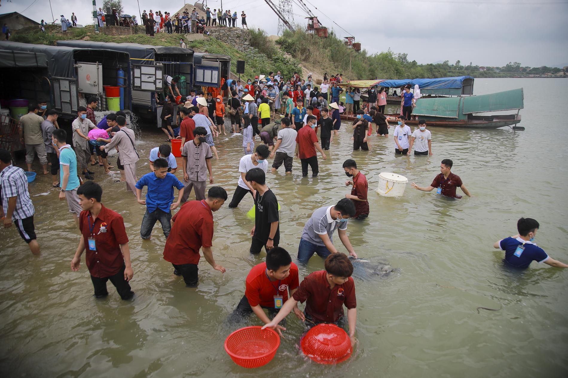 Hơn 10 tấn cá được phóng sinh trên quê hương Bác Hồ - Ảnh 10.