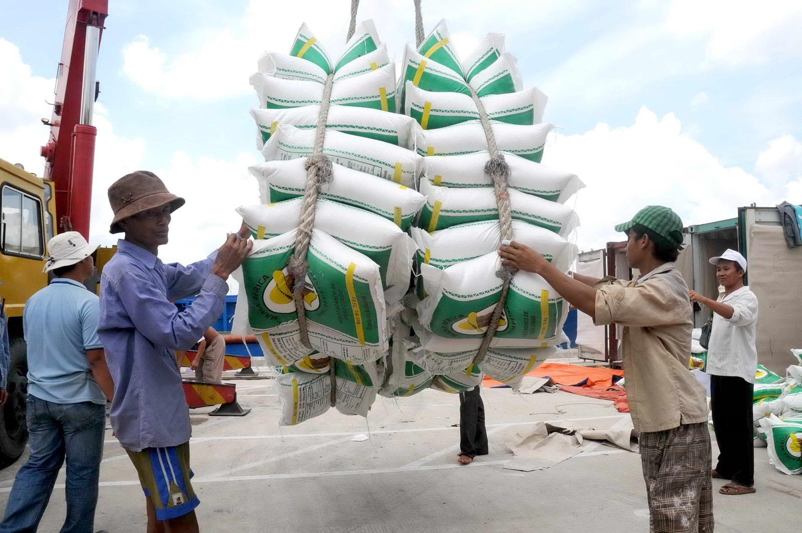 Giá gạo xuất khẩu Việt Nam vượt Thái Lan - Ảnh 1.