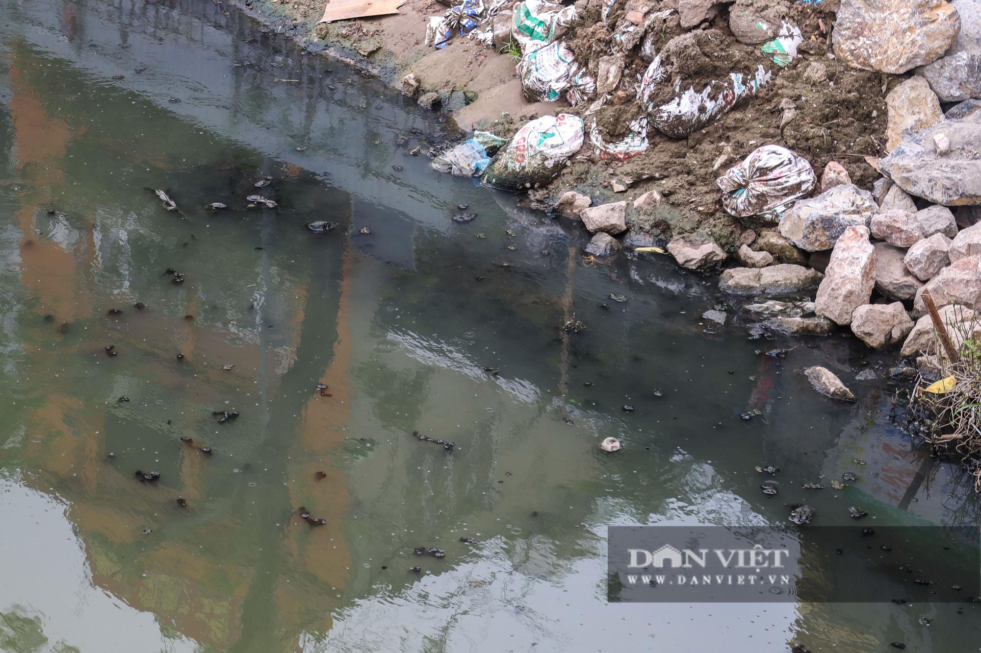 Điểm mặt những con sông ô nhiễm có tiếng ở Hà Nội - Ảnh 3.