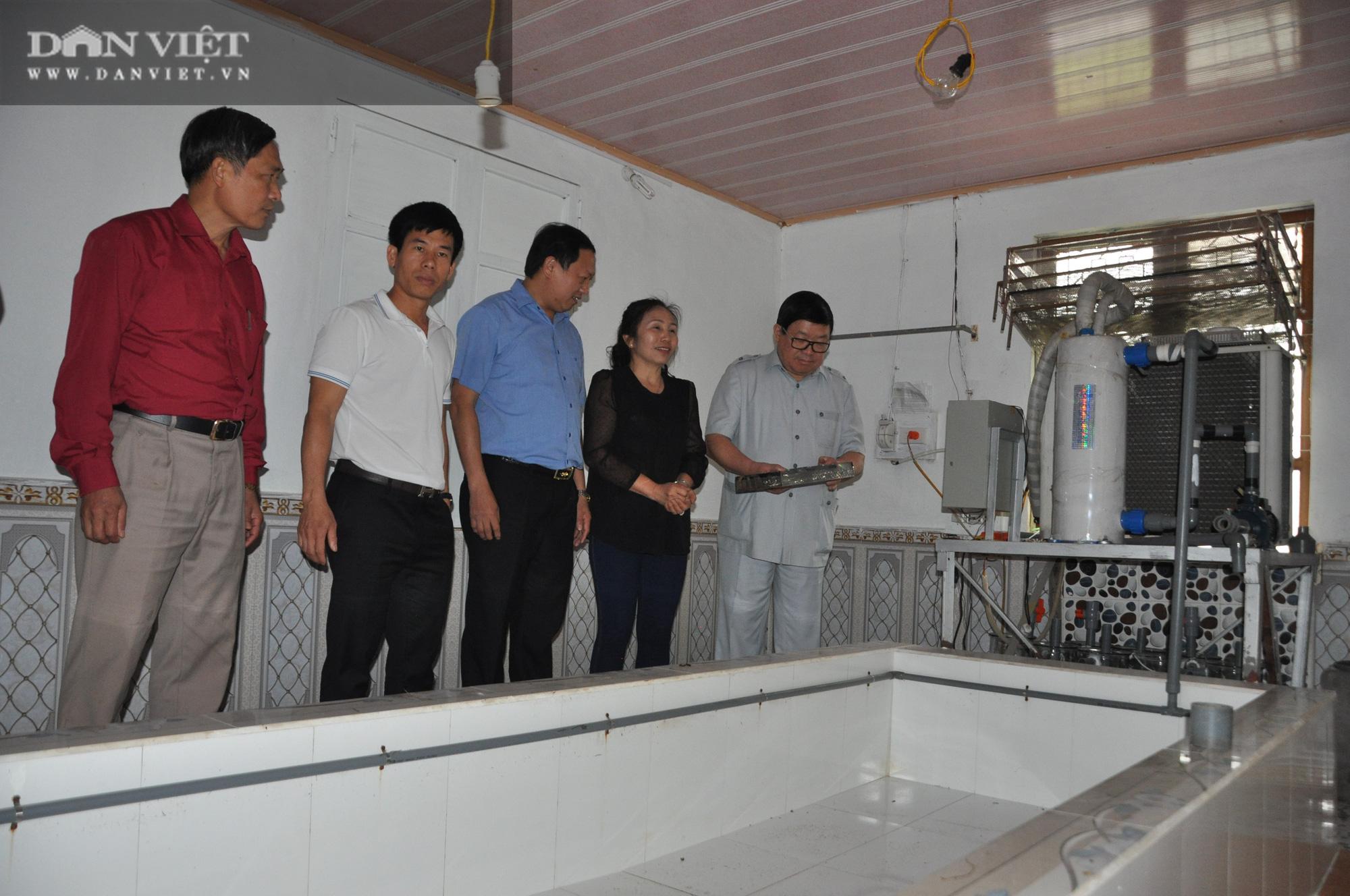 Đại trang trại cá quý tộc trên Cổng Trời mới được Chủ tịch Hội Nông dân Việt Nam đến thăm có gì đặc biệt? - Ảnh 4.