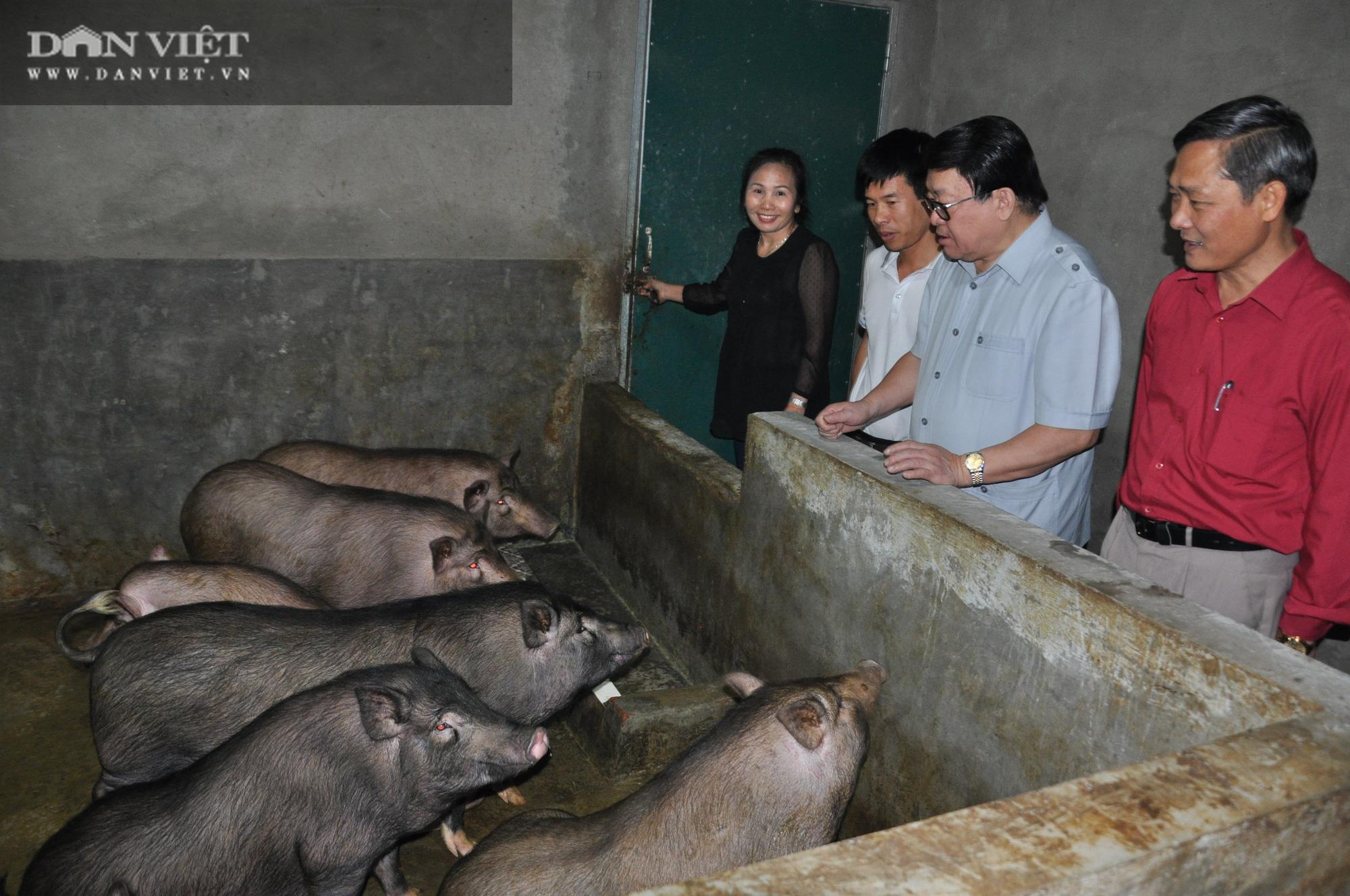 Đại trang trại cá quý tộc trên Cổng Trời mới được Chủ tịch Hội Nông dân Việt Nam đến thăm có gì đặc biệt? - Ảnh 7.