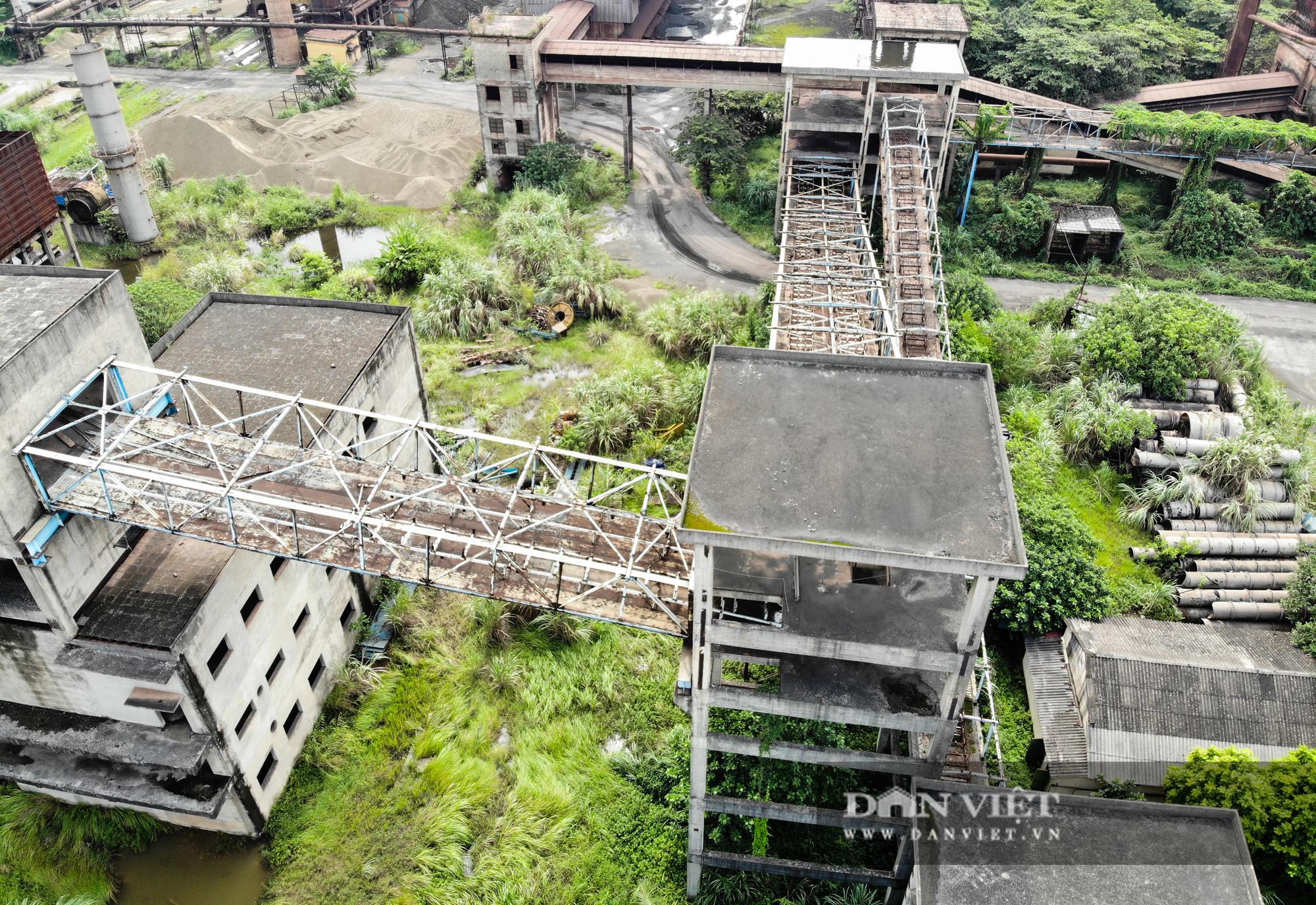 Ai chỉ đạo đàm phán với Tập đoàn ở Trung Quốc ở dự án Gang thép Thái Nguyên? - Ảnh 4.