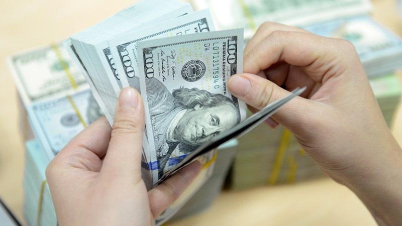 Khoảng 6,5 tỷ USD được NHTM bán kỳ hạn cho Ngân hàng Nhà nước - Ảnh 3.