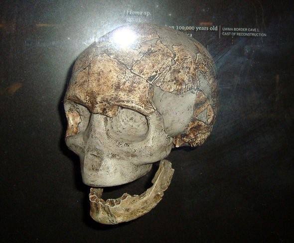Phát hiện mới ở Tây Phi có thể thay đổi hoàn toàn lịch sử tiến hóa của loài người - Ảnh 5.