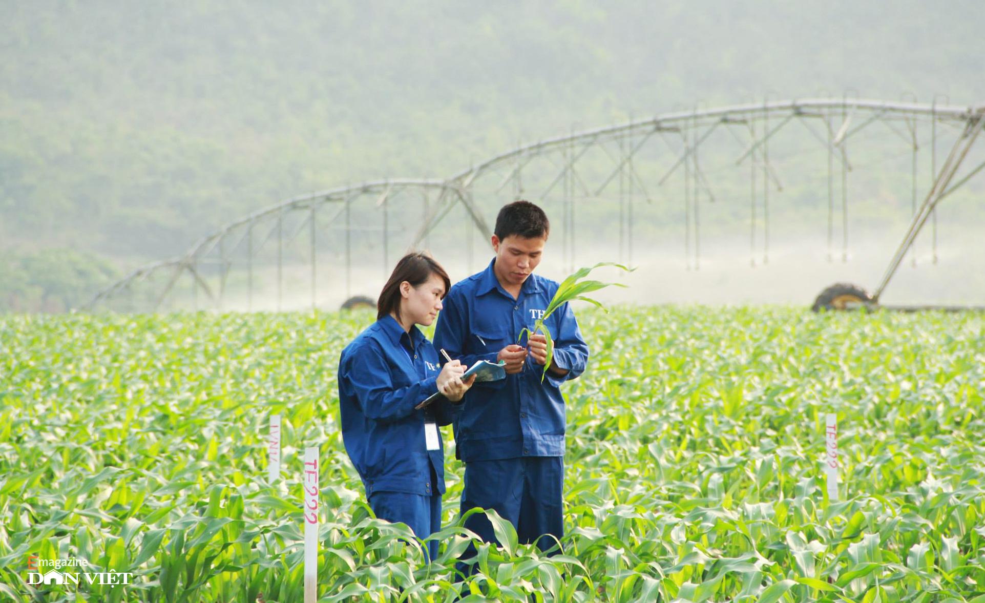"""Bò sữa ở Việt Nam: """"Hậu trường"""" quy trình chăn nuôi cầu kỳ và tỉ mỉ đáng ngạc nhiên    - Ảnh 5."""