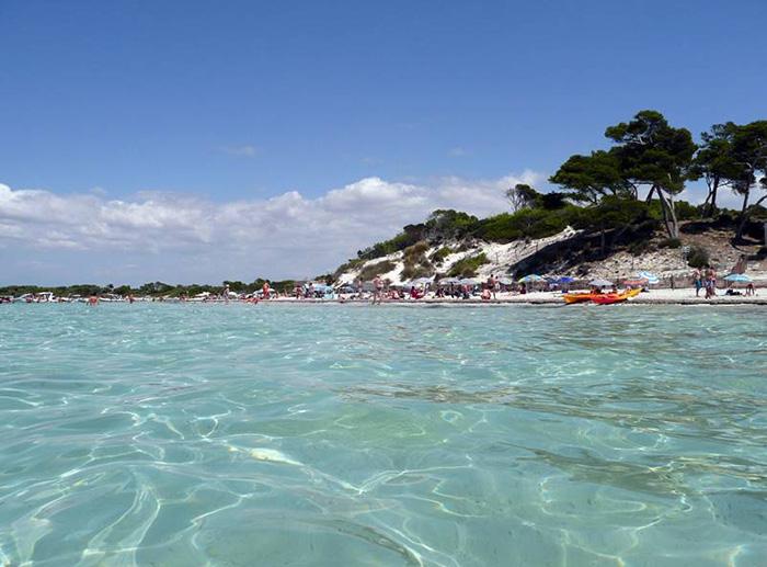 Vì sao Es Trenc được mệnh danh là bãi biển nude đẹp nhất Mallorca - Ảnh 6.