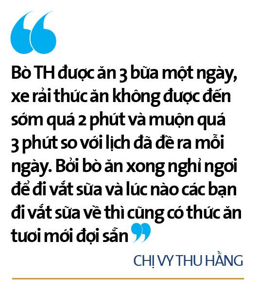 """Bò sữa ở Việt Nam: """"Hậu trường"""" quy trình chăn nuôi cầu kỳ và tỉ mỉ đáng ngạc nhiên    - Ảnh 13."""