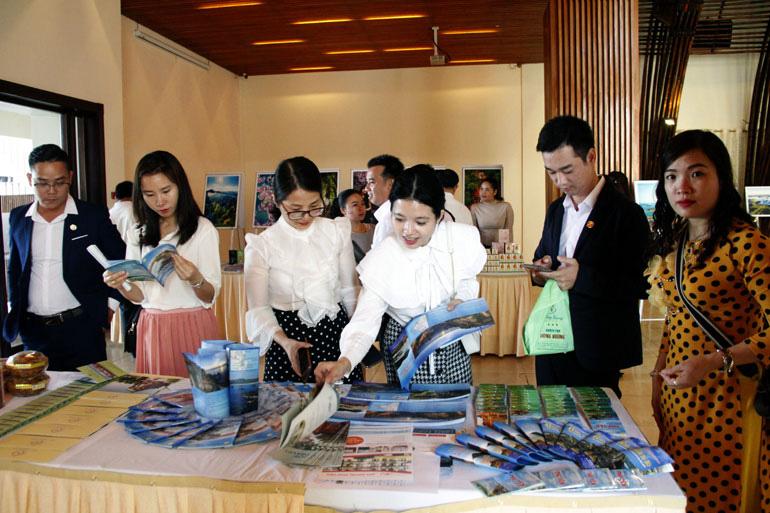Phú Yên xúc tiến kích cầu du lịch hè 2011 với các tỉnh Tây Nguyên - Ảnh 1.