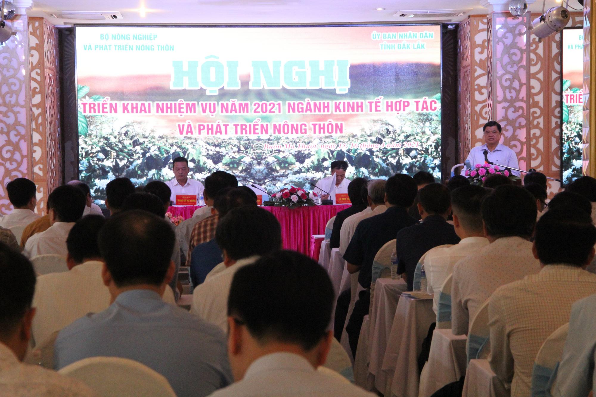 Từng bước nâng cao sức cạnh tranh cho HTX nông nghiệp - Ảnh 2.