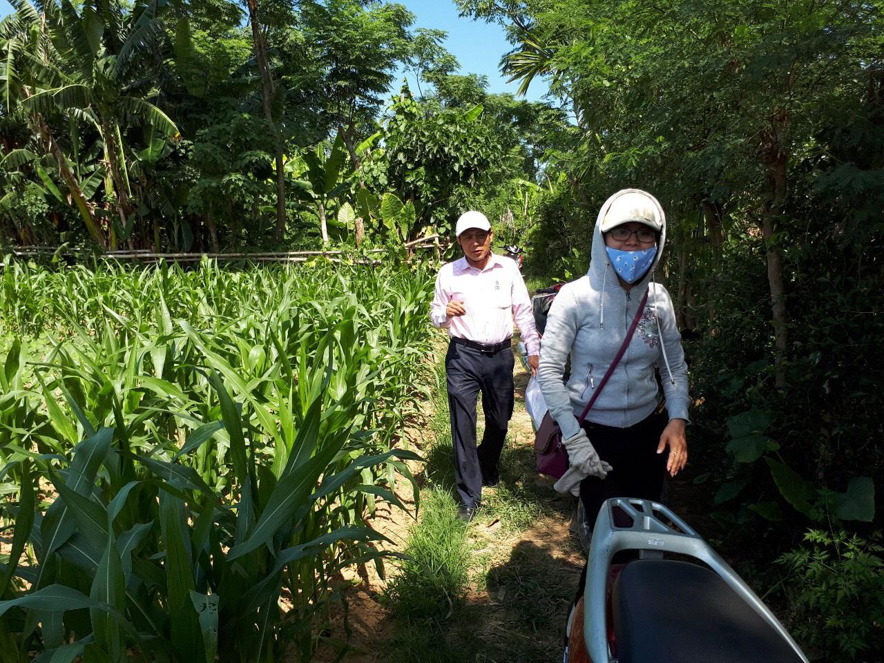 Quảng Nam: Tín dụng chính sách giúp người dân vững vàng phát triển kinh tế xã hội - Ảnh 5.