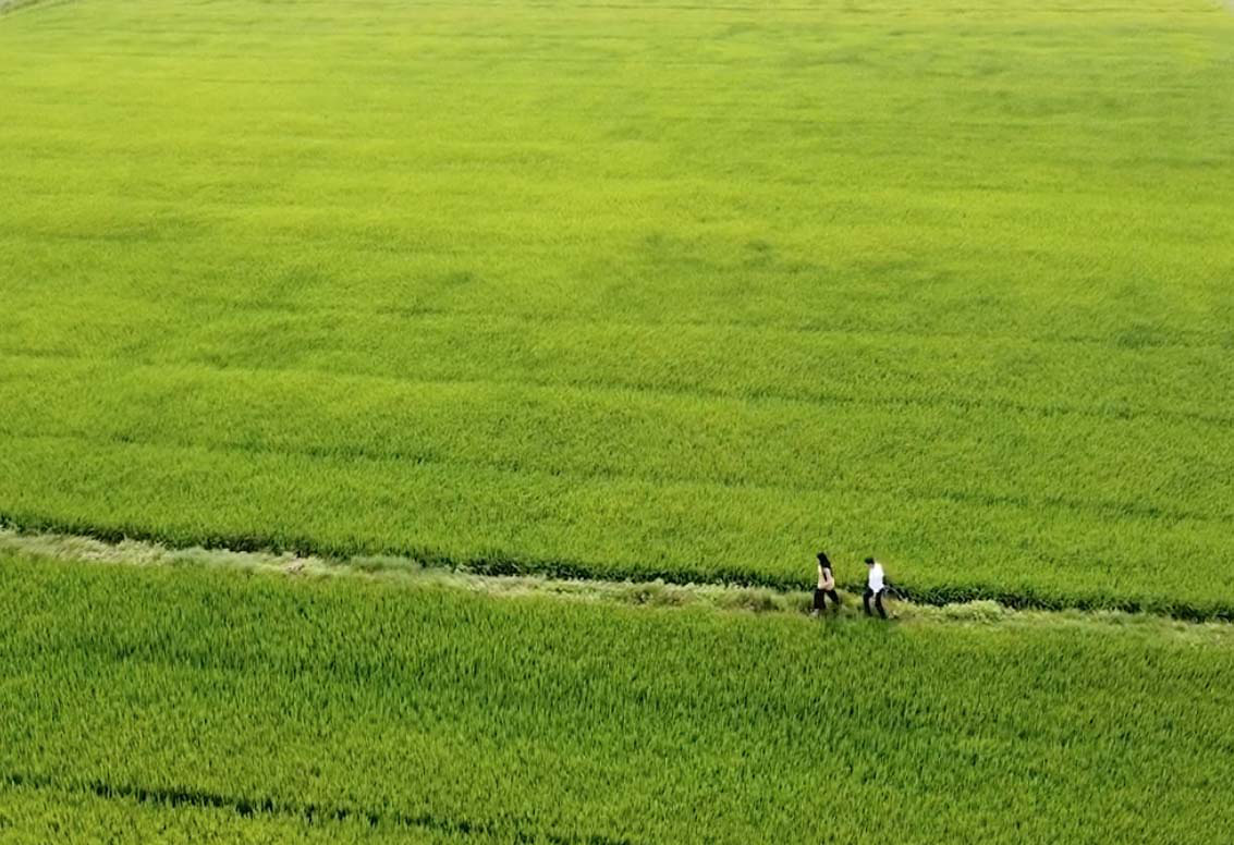 Đẹp mê mẩn với hình ảnh Quảng Bình thiên nhiên tươi đẹp trong MV của ca sĩ Trần Nguyên Thắng - Ảnh 2.