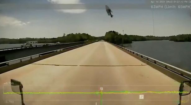 Đang lái xe, tài xế bỗng hoảng hồn khi thấy một chú cá bay thẳng vào kính xe - Ảnh 3.