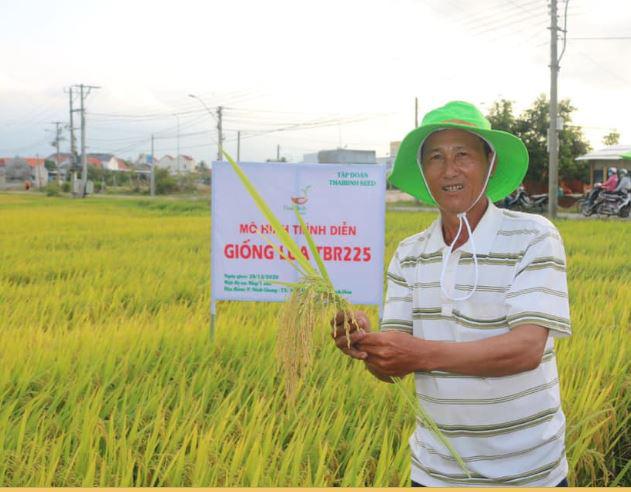 Khánh Hòa: Giống lúa TBR225 gạo ngon, cơm mềm năng suất ra sao khiến nông dân mê mẩn - Ảnh 5.