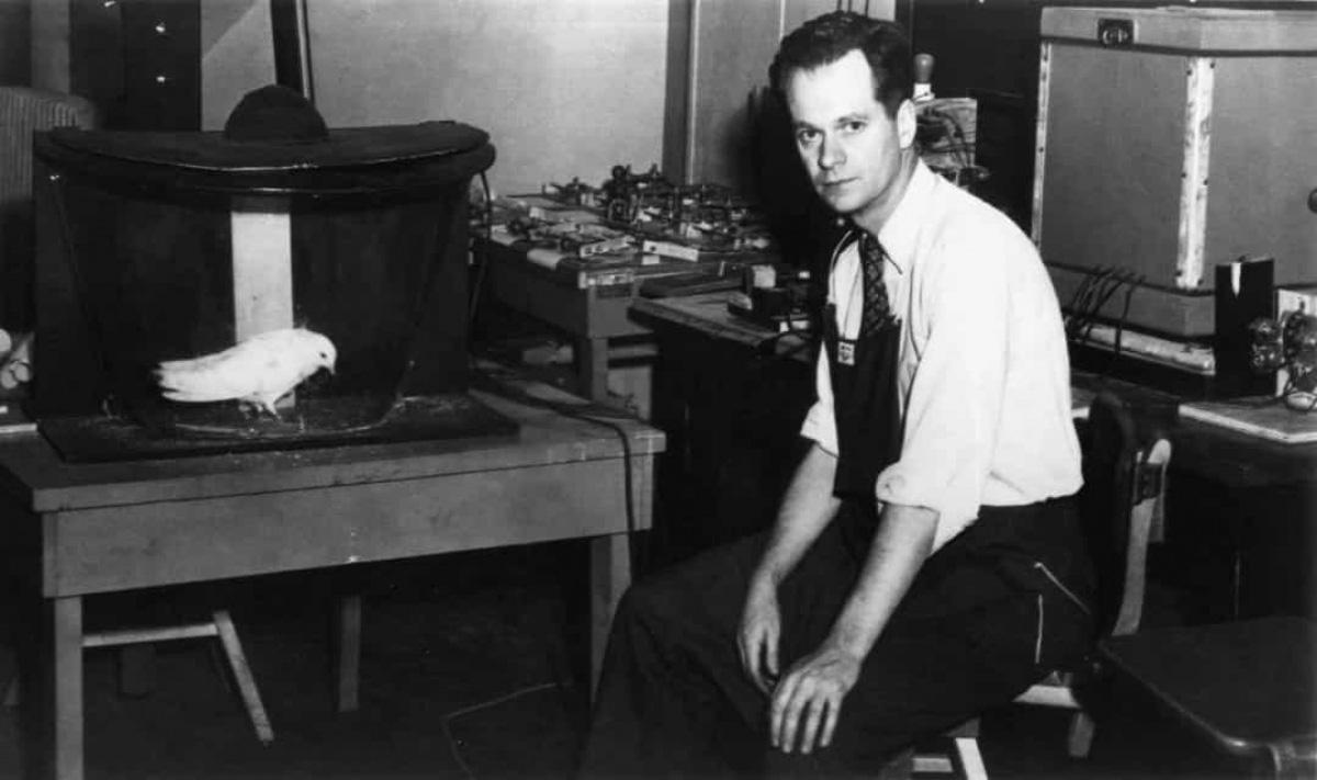 6 thí nghiệm quân sự khó tin của Mỹ trong thế kỷ 20 - Ảnh 4.