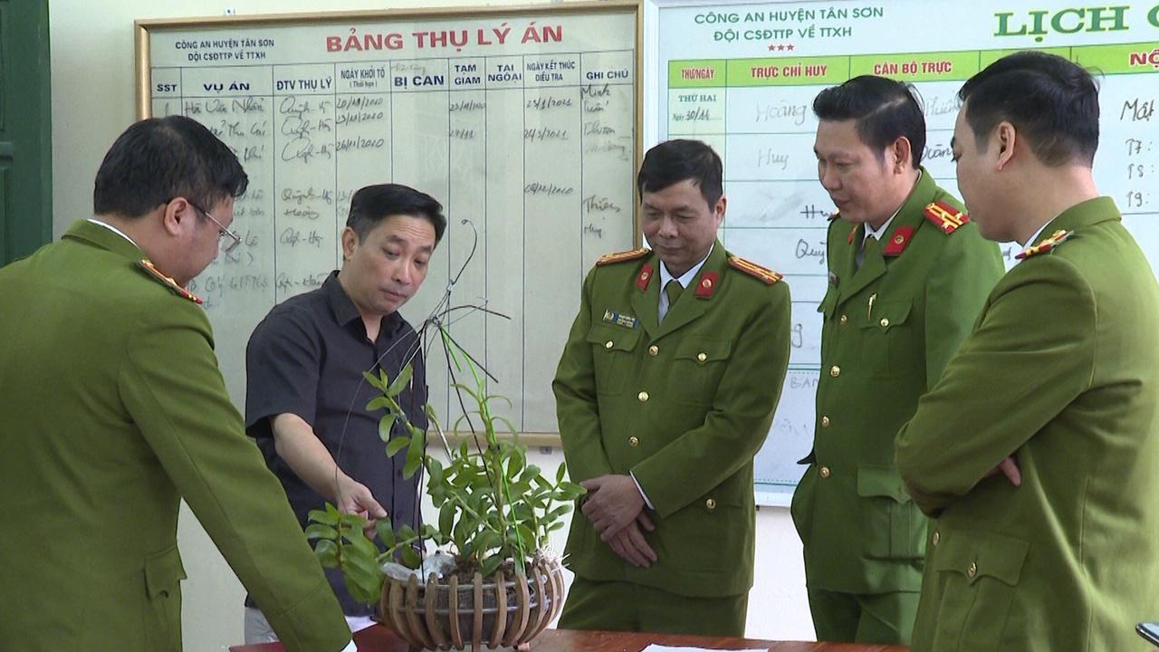 Phú Thọ: Hoa lan đột biến HO mua cây có hoa hẳn hoi, nhưng vì sao vẫn bị lừa hàng trăm...