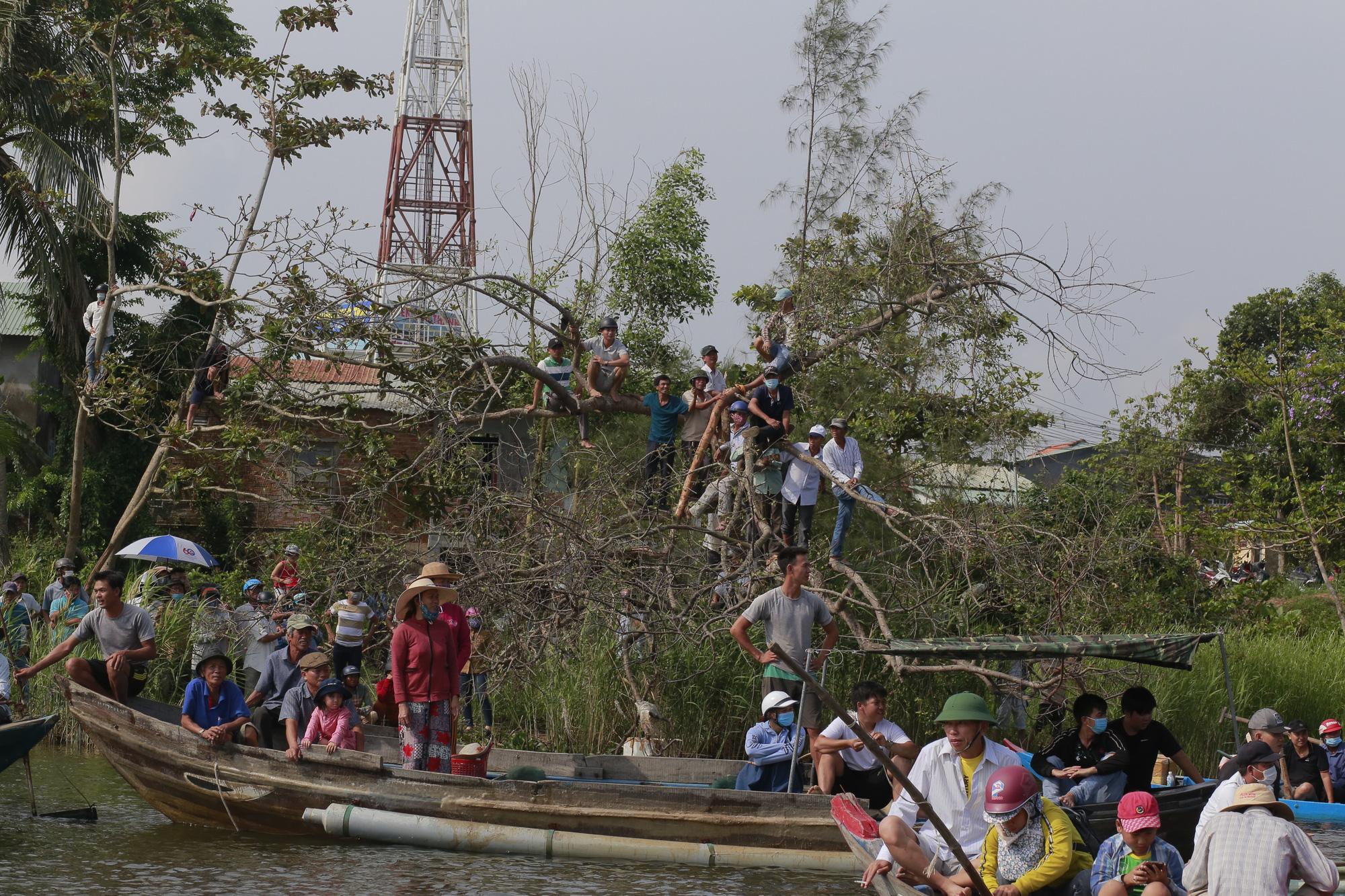 Quảng Nam: Trèo cây, leo nóc nhà để xem đua thuyền ở Tam Kỳ - Ảnh 4.