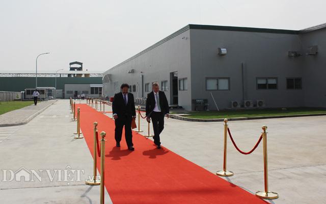 Nhà máy ở Tây Ninh sẽ giúp Bel Gà và các đối tác phát triển kinh doanh và đảm bảo cung ứng nguồn gà giống tốt ra khu vực phía Bắc.