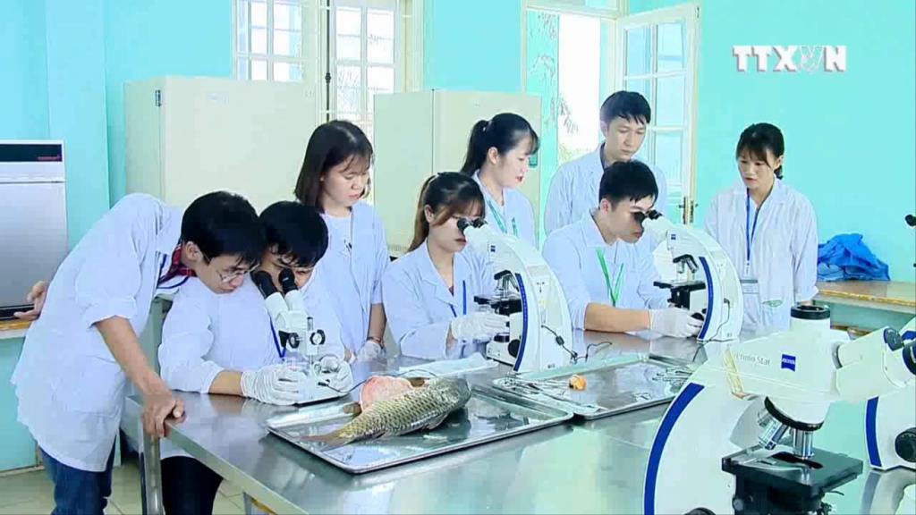 Học nghề bác sỹ chữa bệnh cho tôm, cá, vừa ra trường đã có ngay 40 doanh nghiệp săn đón - Ảnh 3.