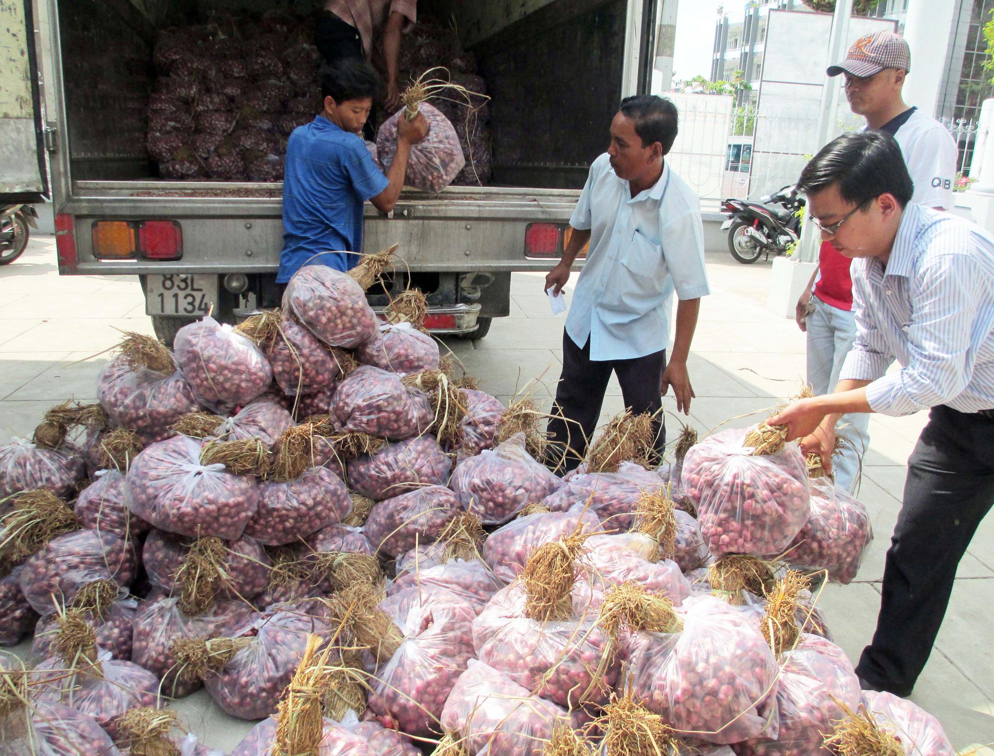 Hành tím Trung Quốc 3.000 đồng/kg, khiến hành tím Vĩnh Châu giá thấp kỷ lục, tồn đọng 50.000 tấn - Ảnh 5.