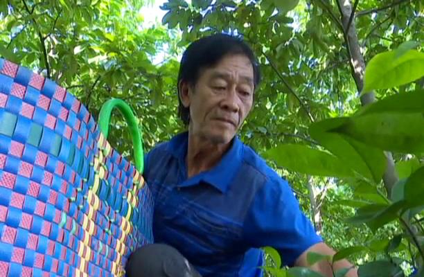 """Tiền Giang: Giăng mùng cho loại trái này tránh ruồi vàng, ông nông dân """"rốn phèn"""" thu nửa tỷ mỗi năm - Ảnh 4."""