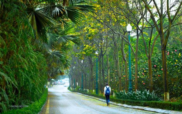 """Ecopark Marathon 2021 - Ngắm cung đường chạy giữa thiên nhiên """"siêu chất"""" trước giờ G - Ảnh 3."""