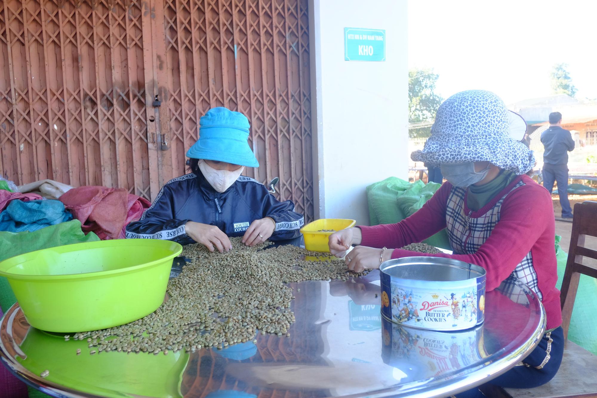 Trung Quốc đột nhiên mua nhiều loại nông sản này của Việt Nam, giá sẽ bật tăng? - Ảnh 1.