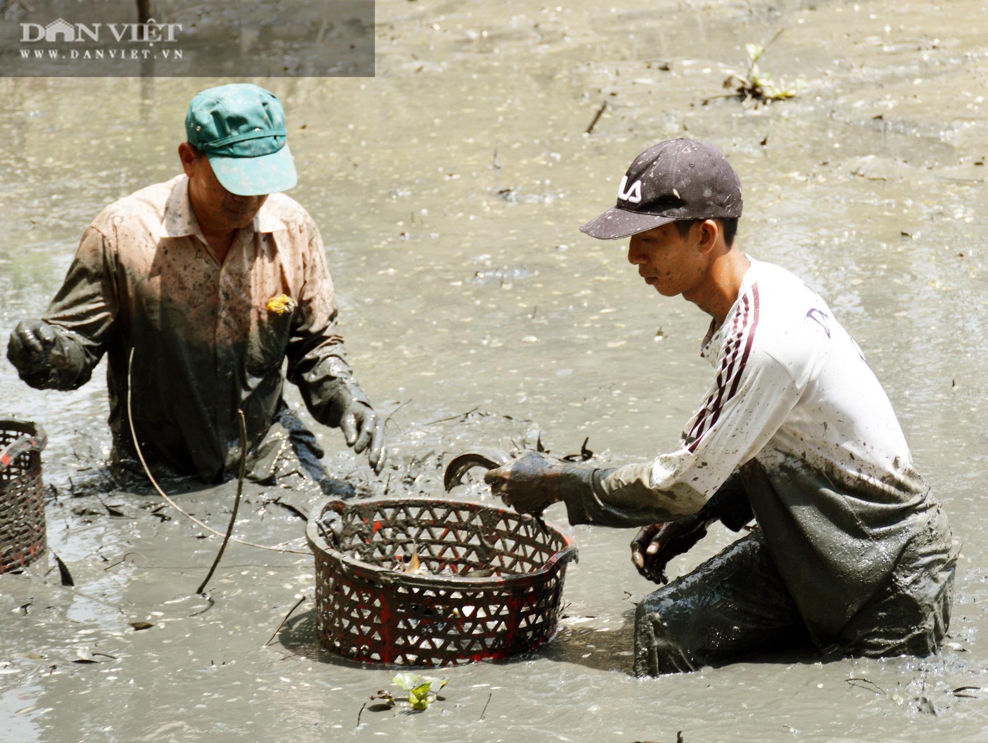 Về Cà Mau tát đìa bắt cá đồng to bự mang nướng than giữa đồng - Ảnh 4.