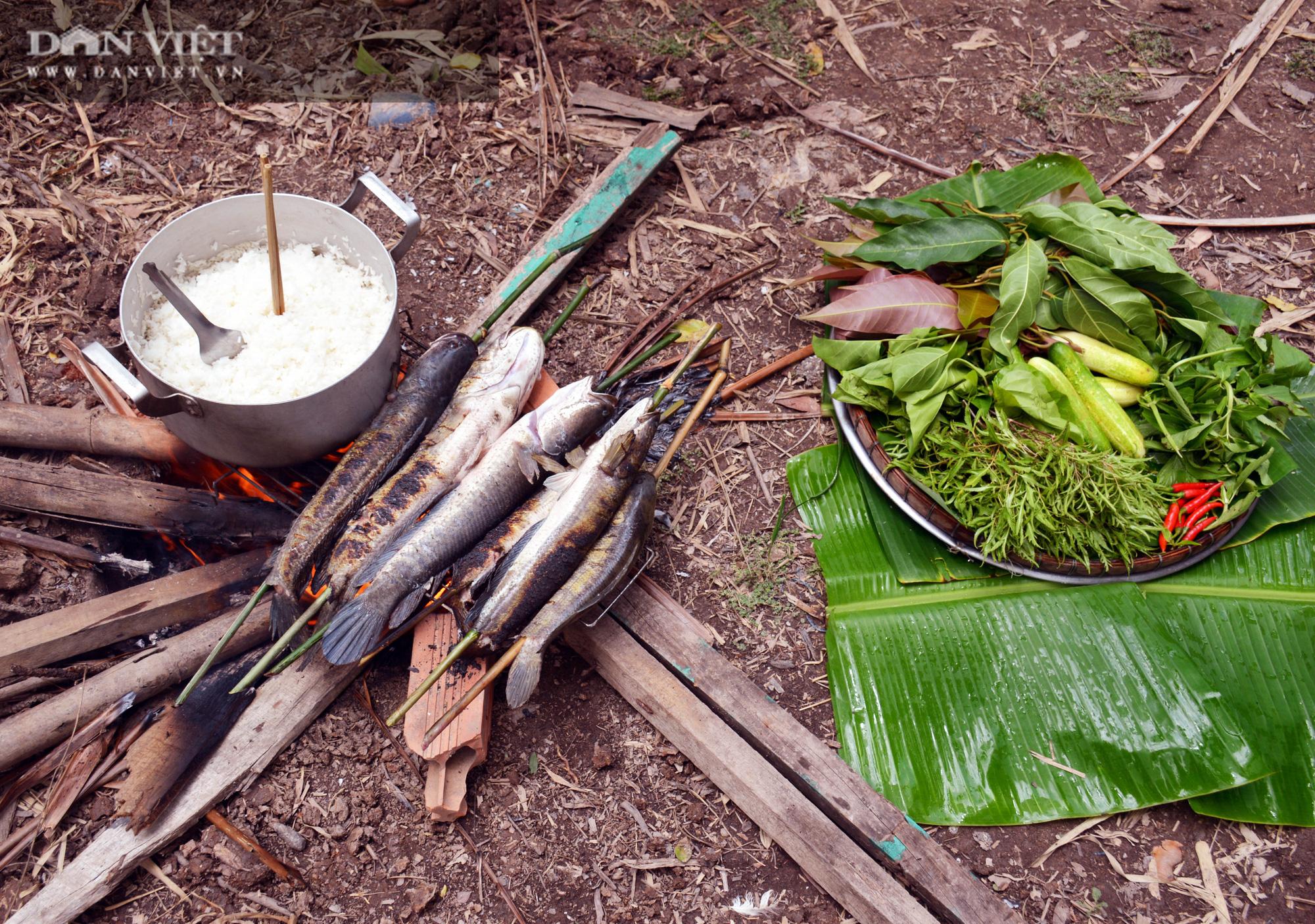 Về Cà Mau tát đìa bắt cá đồng to bự mang nướng than giữa đồng - Ảnh 22.