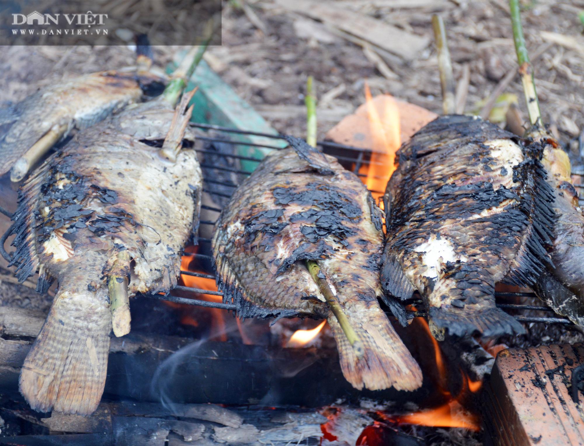 Về Cà Mau tát đìa bắt cá đồng to bự mang nướng than giữa đồng - Ảnh 24.