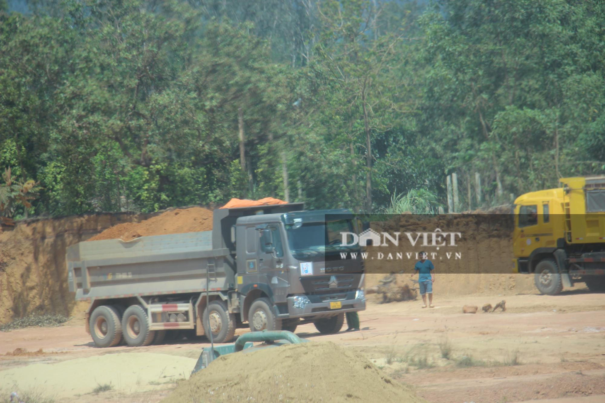 """Đoàn xe hổ vồ logo Bá Sanh Đường """"tung hoành"""" ở Thị xã Hoài Nhơn: Chẳng lẽ """"bó tay""""? - Ảnh 1."""